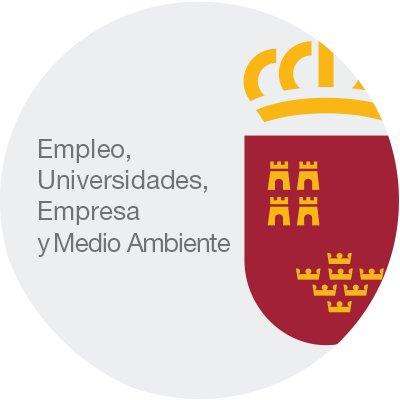 CONVOCATORIA DE SUBVENCIONES PARA EL EJERCICIO 2019 DIRIGIDAS A EMPRESAS DE INSERCIÓN PARA EL FOMENTO DE LA INTEGRACIÓN...