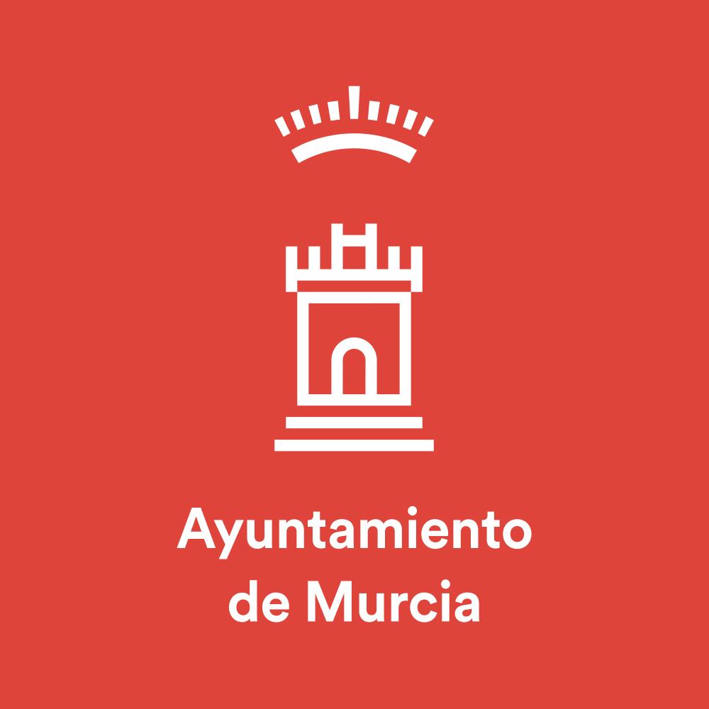 CONVOCATORIA DE 41 PLAZAS DE DISTINTAS CATEGORÍAS EN EL AYUNTAMIENTO DE MURCIA ...