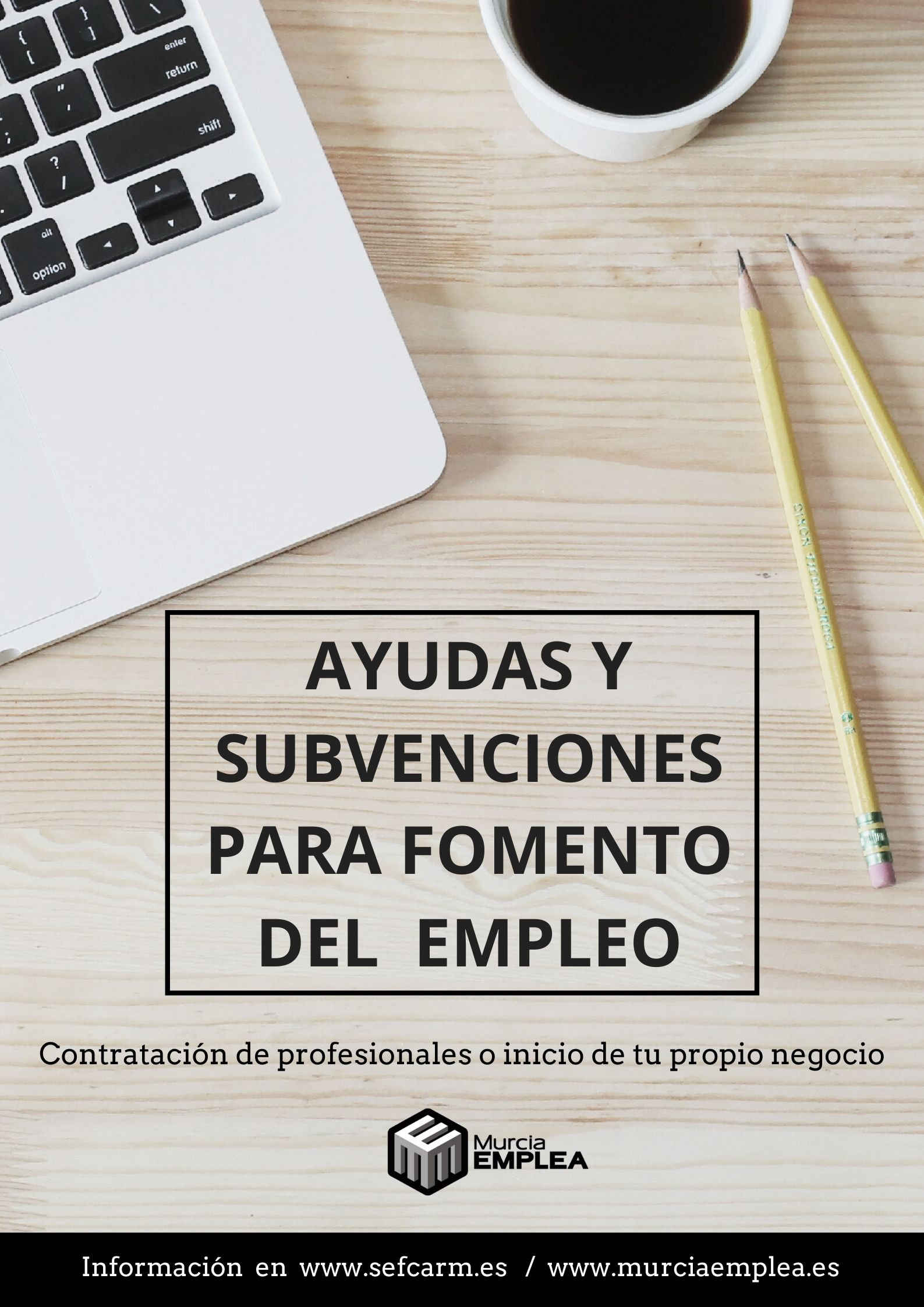 AYUDAS Y SUBVENCIONES PARA EL FOMENTO DEL EMPLEO.